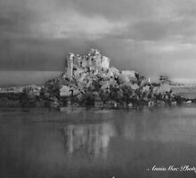 Shag Rock in Black and White by Anne McCormack