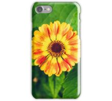 Helenium on a background of leaves iPhone Case/Skin