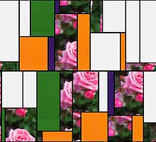 Pink Roses in Anzures 1 Art Rectangles 5 by Christopher Johnson