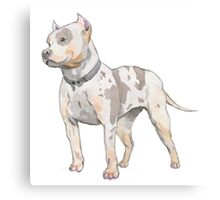 Watercolor Pit Bull Canvas Print