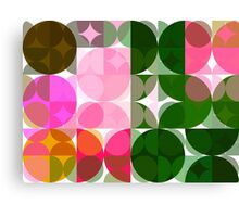 Pink Roses in Anzures 1 Abstract Circles 3 Canvas Print
