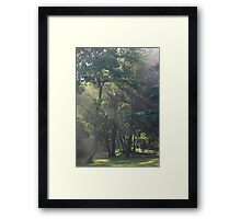 White Arrows of Light Framed Print