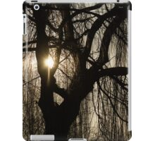 Intricate Lacy Curtains - Sunrise Glow Through the Willows  iPad Case/Skin