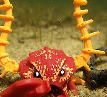 Crab Warrior at the Bottom of the Sea by Shauna  Kosoris