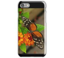 Tiger Longwing iPhone Case/Skin