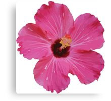 Tropical Pink Flower Graphic Canvas Print
