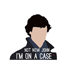 Not Now John I'm On A Case by Haley Heine