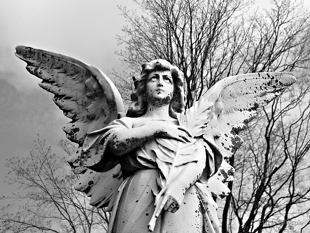 Angel Looking Skyward  by Ethna Gillespie