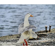 You put your right foot in,  to do the Hokey Pokey.. Photographic Print