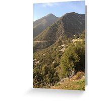Mountain Brush Greeting Card