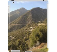 Mountain Brush iPad Case/Skin