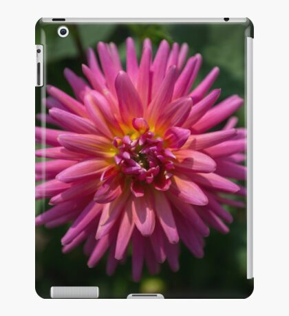 Exploding Flower iPad Case/Skin