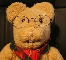 Dear old Ted by Maggie Hegarty