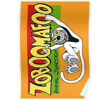 Zoboomafoo Poster
