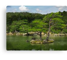 Pine trees at Japanese garden in Kyoto art photo print Canvas Print