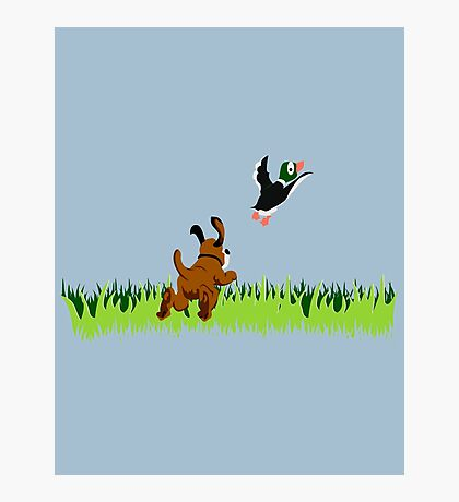 Who's Up for a Duck Hunt? Photographic Print