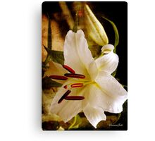 Sweet Days of Summer ~ The Lily's in Bloom Canvas Print