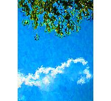 Glowing Sky and Leaves Photographic Print