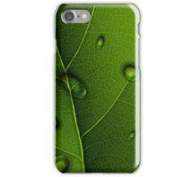 Drops On Green Leaf  iPhone Case/Skin