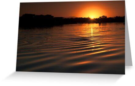 Sunset over Hastings River by Steve Randall