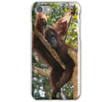 Chilled Ape iPhone Case/Skin