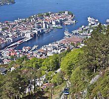 Bergen - Looking Down  by John Thurgood