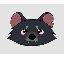 A cute little tasmanian devil  Photographic Print