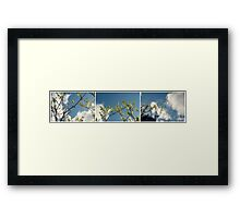 Growth Series Framed Print
