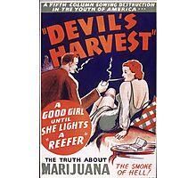 Marijuana The Devil's Harvest Photographic Print