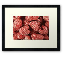 Red Raspberry Fruits Framed Print