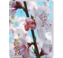 Peach Blossom Time iPad Case/Skin