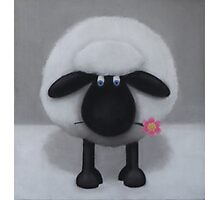 A Flower For Ewe Photographic Print
