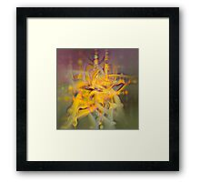 A Kinder, Gentler Abstract on Drugs Framed Print