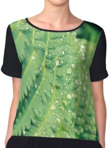 Fern growing in Mont Tremblant National Park Chiffon Top