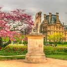 The Beauty of the Tuileries by Michael Matthews