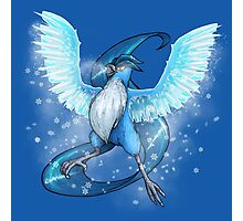 Articuno BITTER FROST Edition Photographic Print