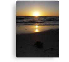 Golden glow over the horizon Canvas Print