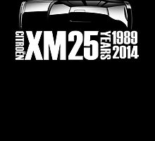 25th Anniversary Citroen XM artwork by RJWautographics