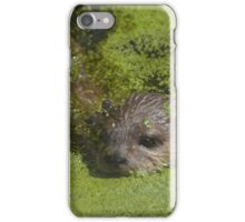 Distracted otter torpedo - Photography iPhone Case/Skin