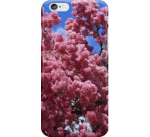 Tree With Pink Blossoms iPhone Case/Skin