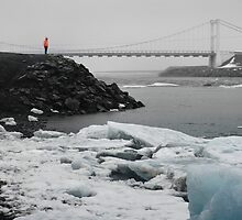 Rainy Day at Ice Lagoon by mountedpixels