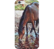 Brown Horse drinking from stream iPhone Case/Skin