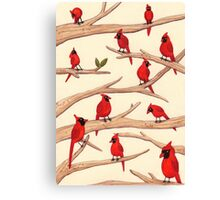 Cardinals Canvas Print