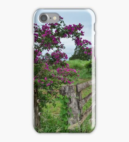 brazilian flower (bougainvillea-primavera) iPhone Case/Skin