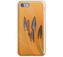 Gentle Arrows iPhone Case/Skin