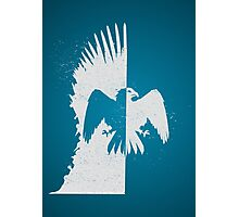 House Arryn Photographic Print