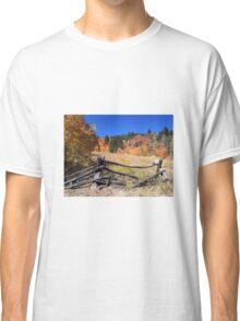 Fall colors Classic T-Shirt