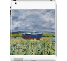 View from Sheldrakes over the Dee Valley iPad Case/Skin