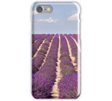 Lavender bloom iPhone Case/Skin