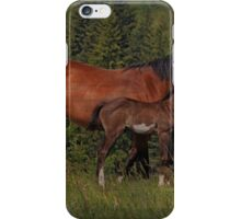 The Love Of A Mom iPhone Case/Skin